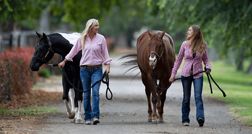 Two horse owners walking their horses and sharing a moment together outside.