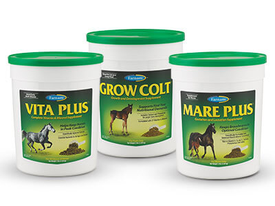 Equine Nutritional Supplements Can Help Fill Gaps