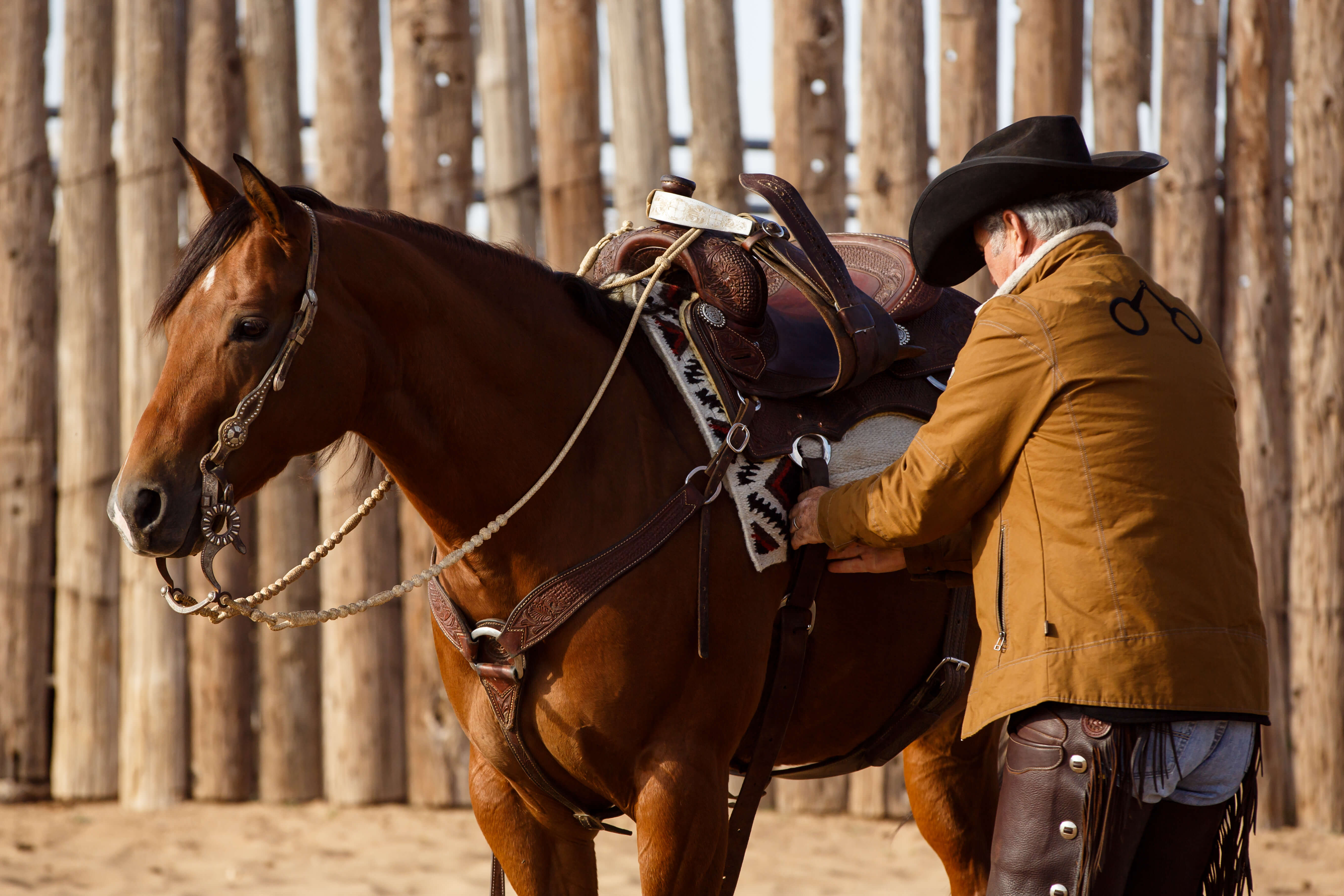Does Your Western Saddle Fit? Kevin Oliver on What You Need