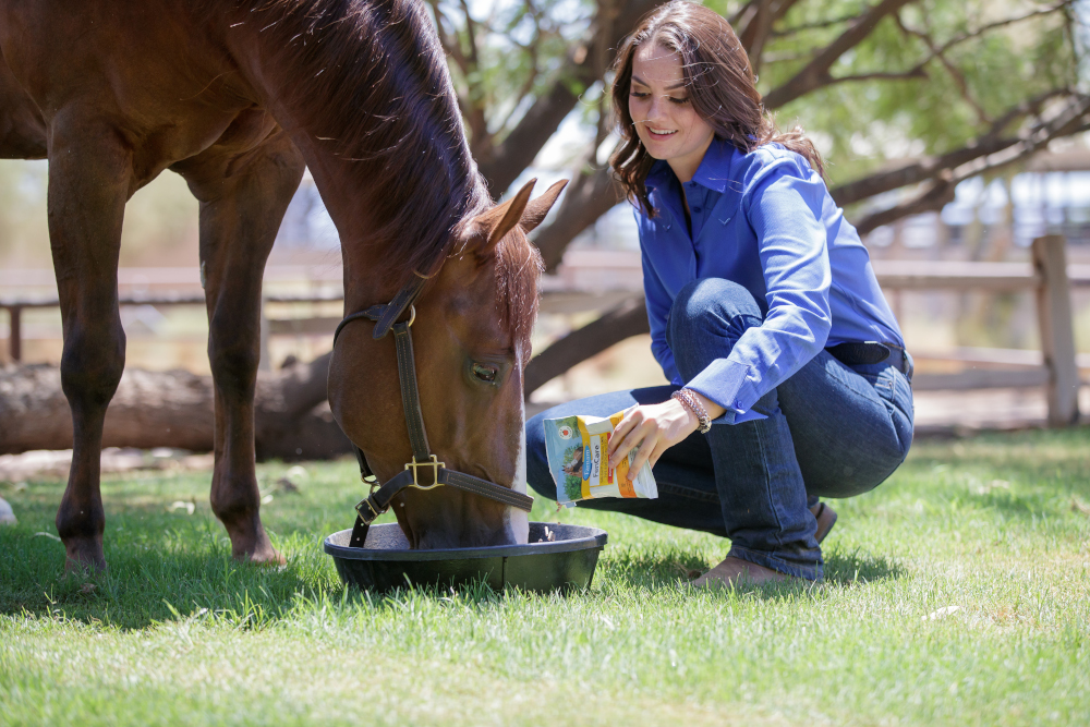 Learn if Farnam FenCare dewormer with fenbendazole is right for your horse.